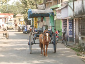 A horse-drawn carriage in Murshidabad