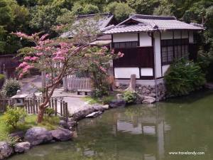 Kyoto's list of 'don'ts' for visitors | TravelAndy