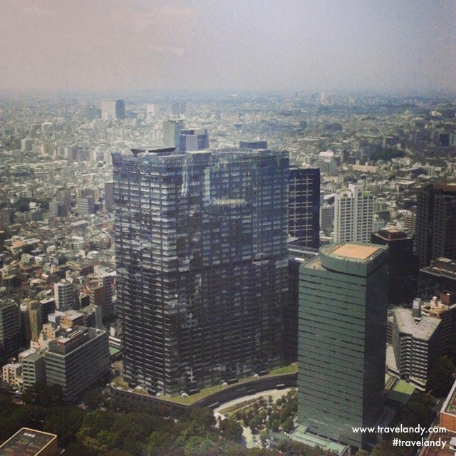Tokyo skyline. You can see Mt Fuji from this 45th floor observatory on a clear day