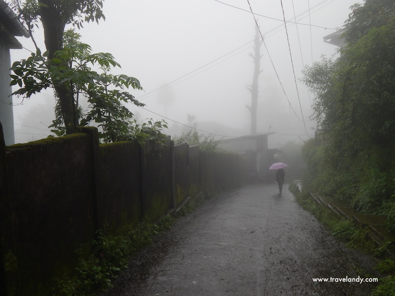 Drizzly and misty Darjeeling