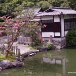Kyoto's list of don'ts for visitors