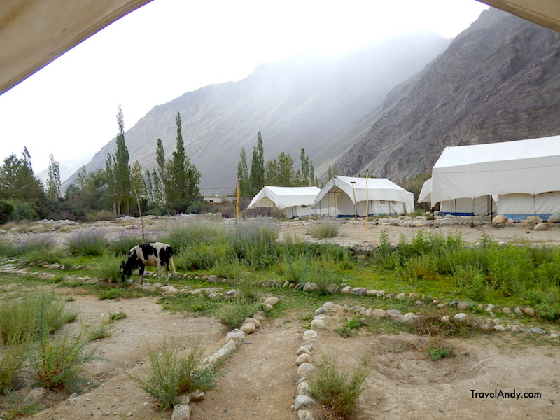 The tents at our camp in Hunder village