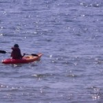 Water sports galore at Tehri lake fest