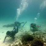 Go scuba diving in Karnataka this winter