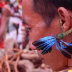 Hornbill festival from Dec 1