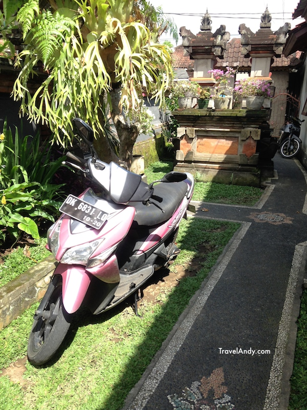 Yea, this pink beauty is one of the scooters I'd rented during my trip