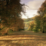 Check out Scotland's beautiful autumn colours